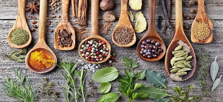 The Integration of Ayurveda and Functional Medicine