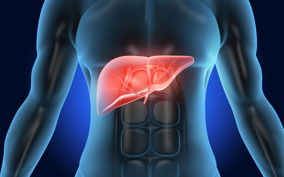 The Functions of the Liver and Signs You Need to Detox